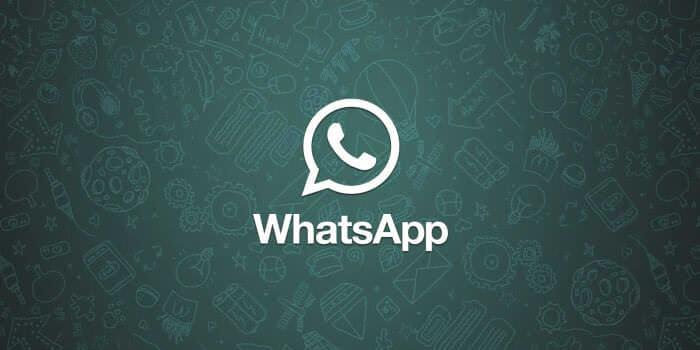 что означает одна галочка в Whatsapp - фото 9
