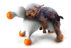 Дизайн, який полегшує собакам життя