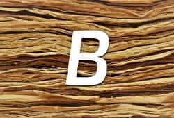 Технології Робота над помилками — скрипт для перевірки орфографії онлайн Bukvus js