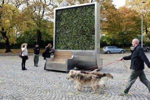 Технології CityTree — панель з моху, що очищує повітря та заміняє 275 дерев екологія німеччина новина