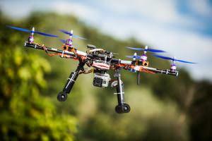 Життя У М'янмі за допомогою дронів висадять до 2 млрд дерев дрон екологія новина у світі