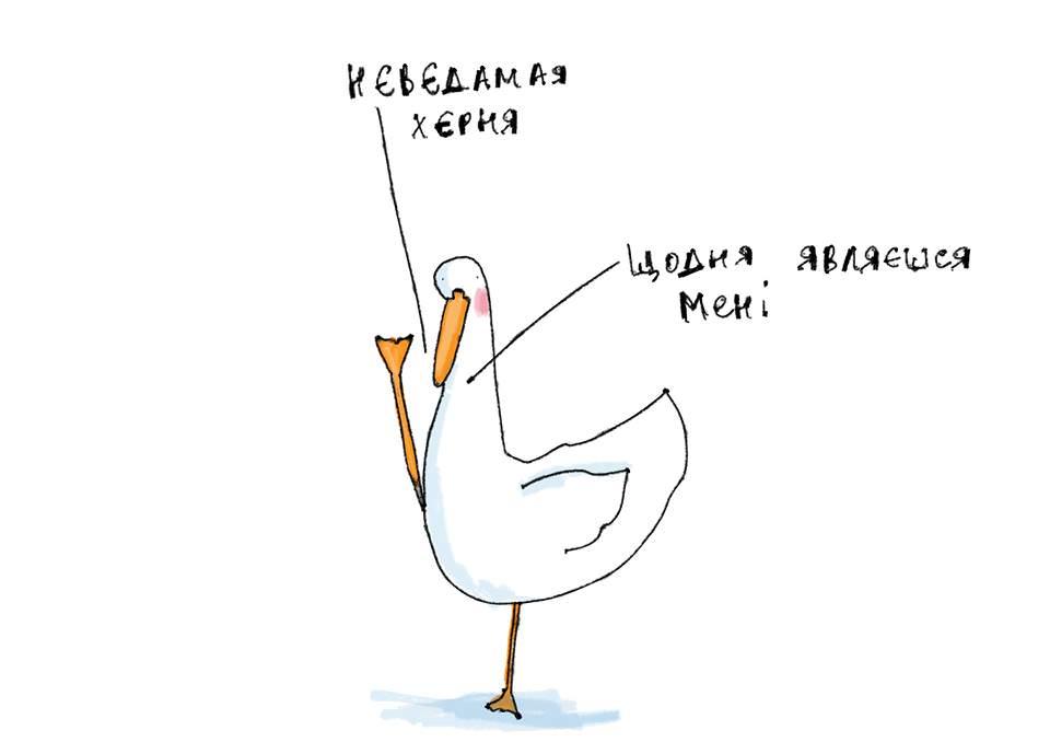 Вигаданий персонаж Гусь з українського Facebook прикрасив картки ПриватБанку