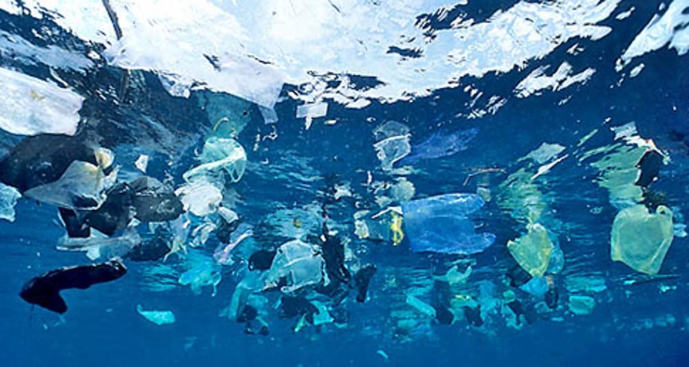 Тайвань відмовляється від безкоштовних пластикових пакетів