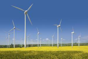 Життя На Миколаївщині побудують вітроелектростанцію потужністю 500 МВт енергетика Запоріжжя кнр миколаїв новина у світі україна