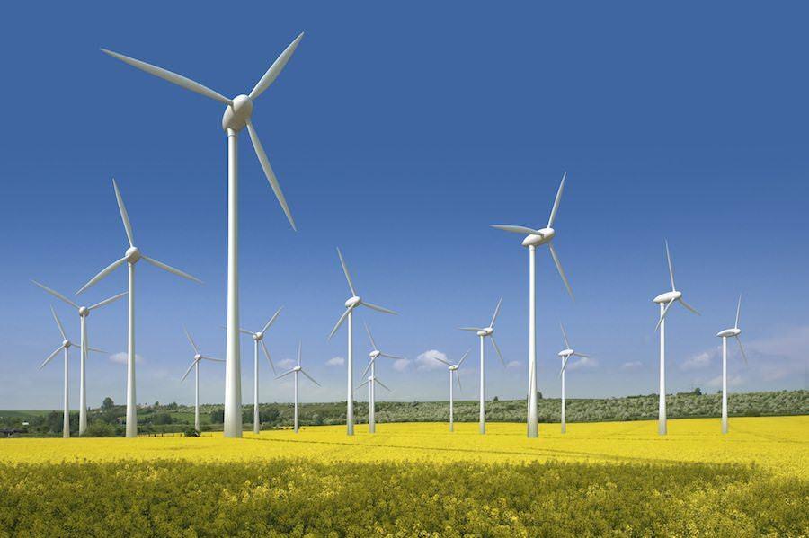 Американці вкладуть 400 млн $ у будівництво вітрової електростанції в Запорізькій області