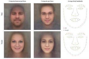 Життя Штучний інтелект навчився визначати сексуальну орієнтацію за фото з точністю 91% ЛГБТ новина сша штучний інтелект
