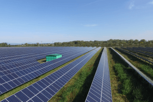 Життя На Закарпатті скоро запрацює найбільша сонячна електростанція у Західній Україні енергетика зроблено в Україні новина україна