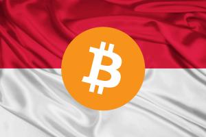 Життя Біткойн заборонять в Індонезії та підтримають в Білорусі bitcoin білорусь Блокчейн криптовалюти у світі