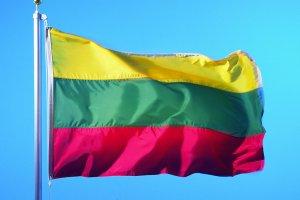 Інтернет У Литві запустили сайт Vatnikas.lt — за прикладом українського «Миротворця» безпекаЛитвановина