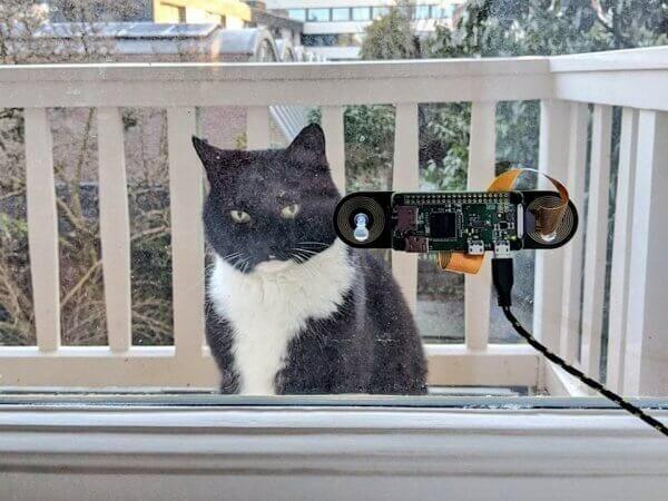 Програміст розробив систему розпізнавання свого кота