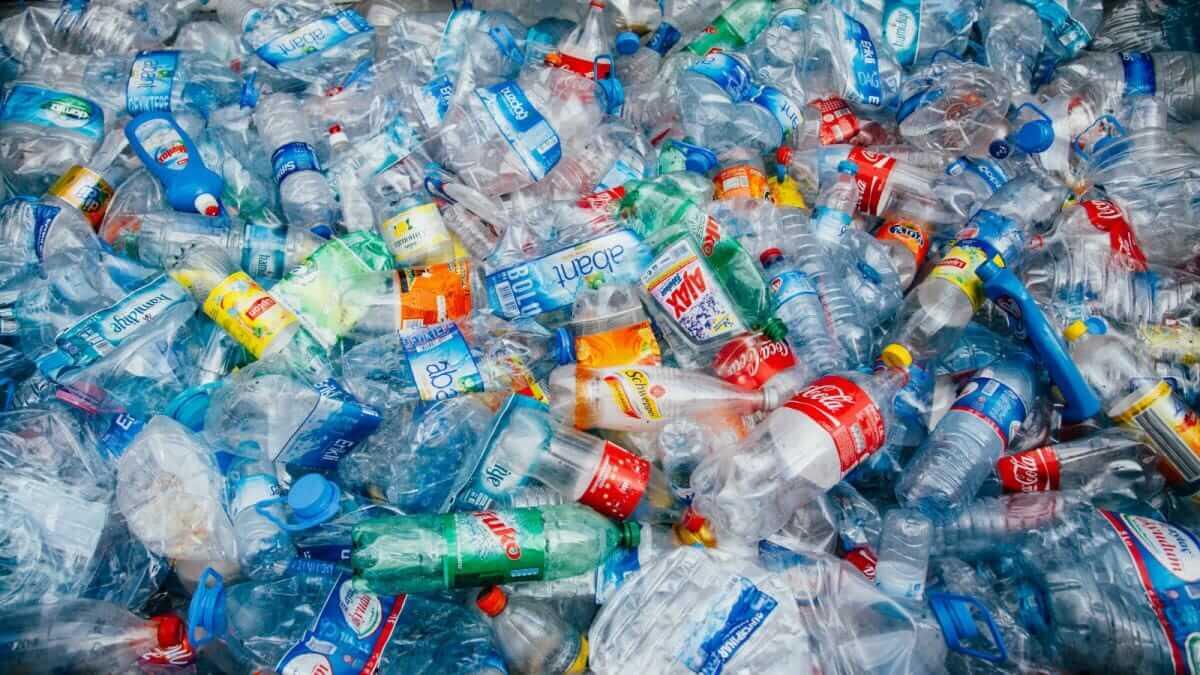 Учені випадково знайшли бактерію, яка знищує пластик