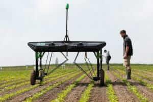 Технології У Швейцарії та Франції створили роботів, що обробляють землю і вирощують кукурудзу новина роботи Сільське господарство франція швейцарія