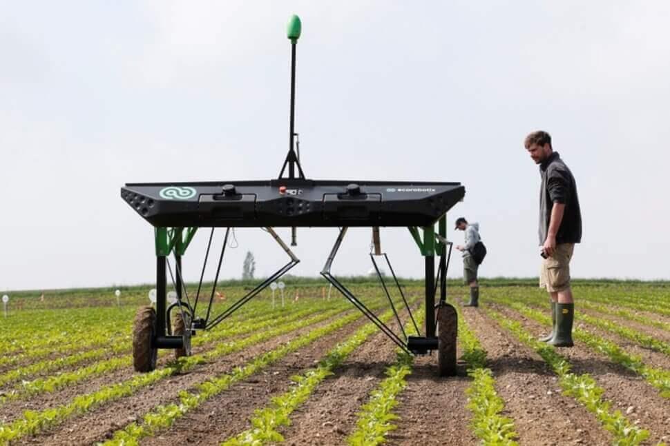 У Швейцарії та Франції створили роботів, що обробляють землю і вирощують кукурудзу