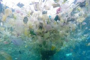 Життя У Великобританії хочуть подвоїти податок на пластикові пакети британія екологія новина у світі