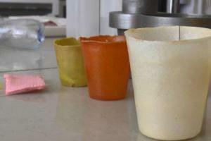 Технології У Сумах створили екологічний матеріал, з якого можна робити одноразовий посуд та упаковку екологія зроблено в Україні новина одеса суми україна