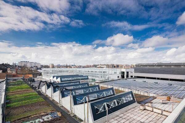 У Бельгії супермаркет вирощує овочі та фрукти на власному даху
