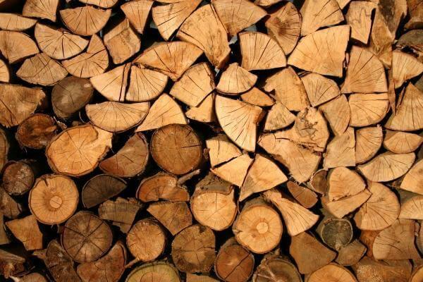 У Китаї створили штучну деревину, яка виявилася кращою за оригінал