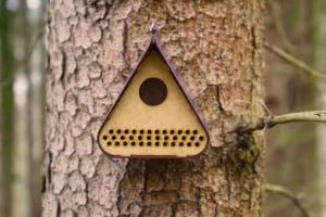 Технології У Румунії створили шпаківню, що попереджає лісників про вирубку дерев екологія новина румунія у світі