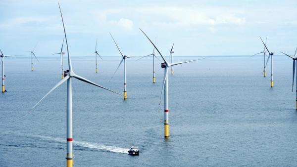 У Великій Британії запрацювала плавуча вітроелектростанція, площею 20 тис. футбольних полів