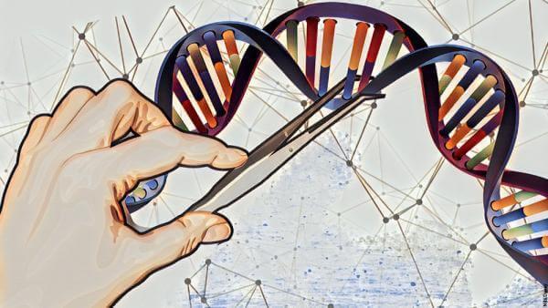 Вчені змогли відредагувати ДНК миші перед народженням і запобігти генетичному захворюванню