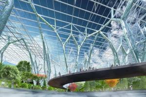 Життя У Китаї збудують найбільший ботанічний сад у світі площею 15 га екологія кнр новина у світі