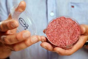 Життя З 2021 року в Нідерландах вирощуватимуть яловичину в біореакторах Їжа Нідерланди новина у світі