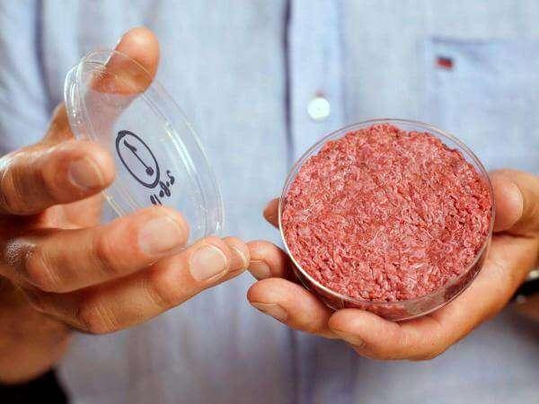 З 2021 року в Нідерландах вирощуватимуть яловичину в біореакторах
