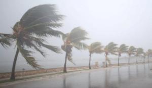 Життя Індію сколихнув найпотужніший за 20 років ураган Індія новина у світі