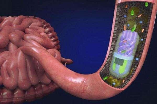 Надрукована на 3D-принтері таблетка з камерою аналізує бактерії кишківника