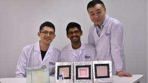 Технології Як гідрогель перетворює морські випари на прісну воду екологія новина Сінгапур у світі