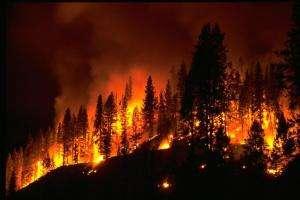 Технології В Іспанії дрони попереджатимуть про лісові пожежі безпекадронІспаніяновинау світі