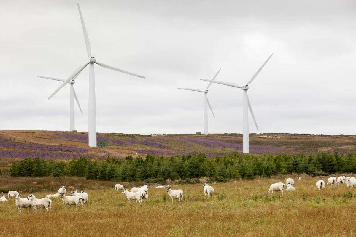 Виробленої в Шотландії вітряної енергії вперше вистачить на всі домогосподарства країни