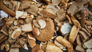 Життя У Роттердамі перетворюють хлібні недоїдки на біогаз екологія Нідерланди новина сміття у світі