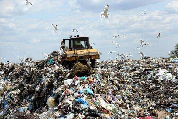 Сортування сміття: як, навіщо та скільки можна заробити?