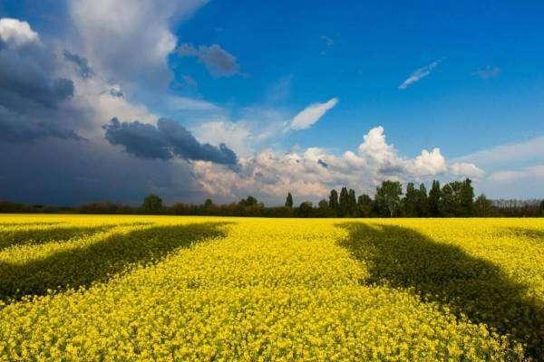 Як перестати боятися і почати говорити українською?