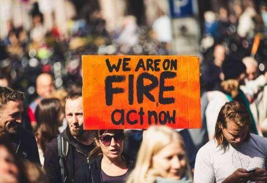 Життя Співробітники Google закликають керівництво зменшити викиди вуглецю google глобальне потепління клімат новина протести у світі