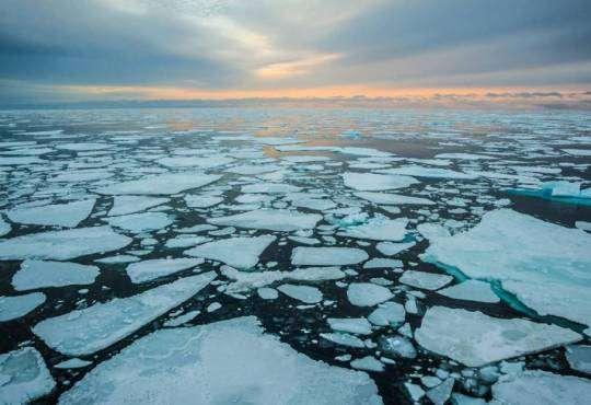 """Життя Вчені: Арктика """"практично зникне"""" протягом 50 років Арктика дослідження екологія стаття"""