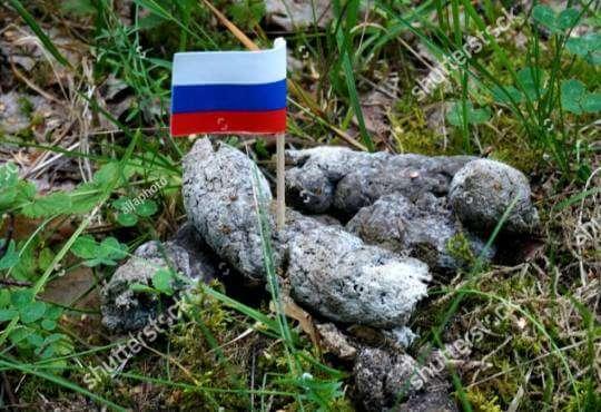 Життя Сайт Shutterstock заблокували в РФ за фото прапорця в собачих фекаліях новина росія фото
