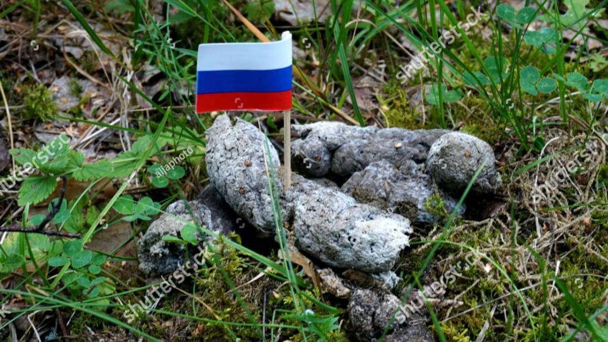 Сайт Shutterstock заблокували в РФ за фото прапорця в собачих фекаліях