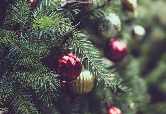 Життя Чому Різдво має дві дати? (відео) embed-video відео історія релігія