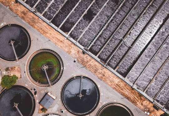 Технології Голодні та моторні: як мікроорганізми очищують воду? екологія пластик стаття
