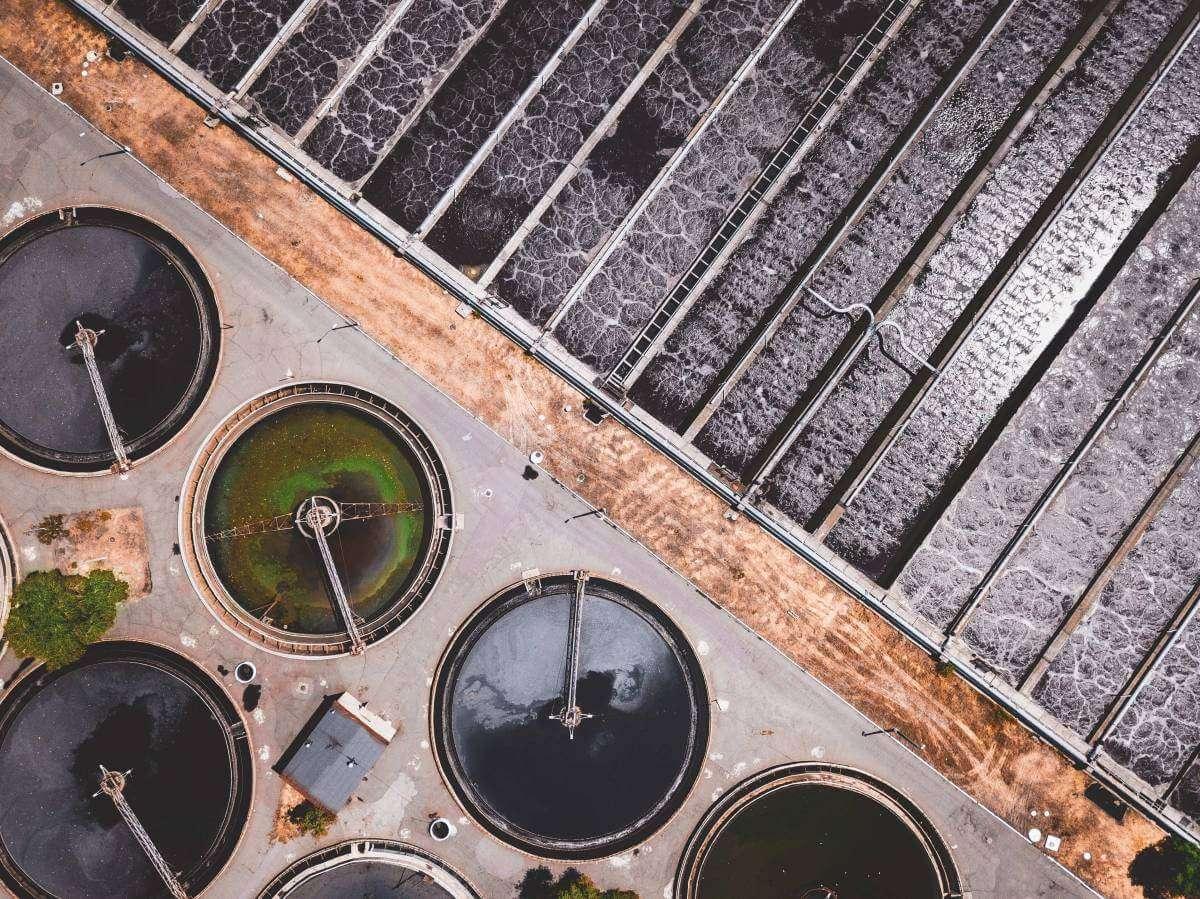 Голодні та моторні: як мікроорганізми очищують воду?