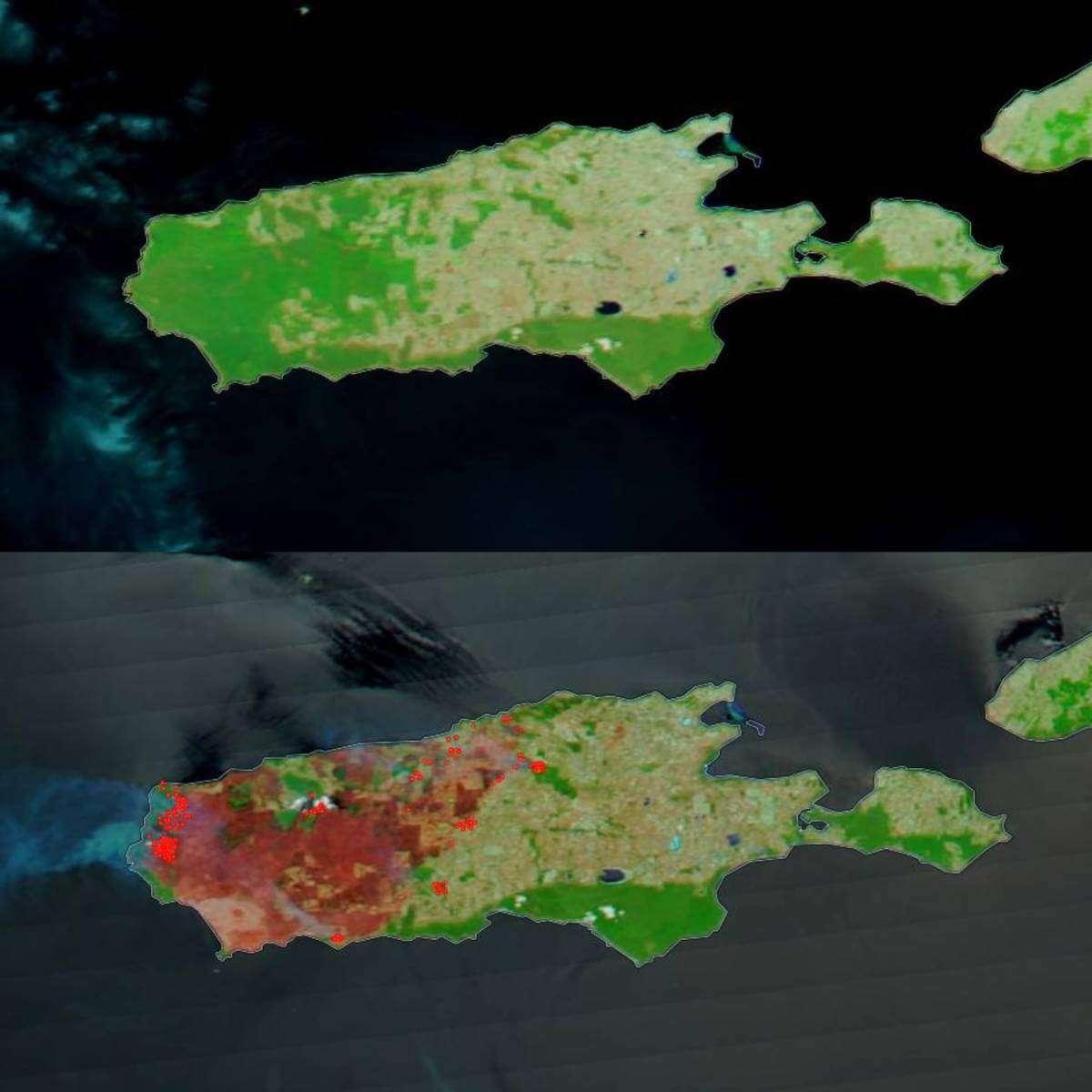 Згори — австралійський острів Кенгуру 16 грудня 2019 року. Знизу — він же три тижні потому. Червоним позначено зони, які досі у вогні. Найменший «натяк» на рослинність, що не згоріла, позначено яскраво-зеленим кольором.