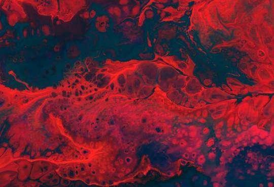 Життя Розділяй і володарюй: люди та бактерії не такі вже й різні біологія медицина стаття суспільство