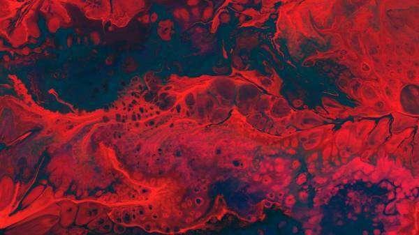 Розділяй і володарюй: люди та бактерії не такі вже й різні