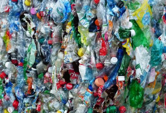 Життя Вчені знайшли бактерію, яка харчується пластиком екологія німеччина новина у світі