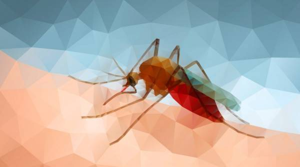 Вчені знайшли мікроб, який допоможе перемогти малярію