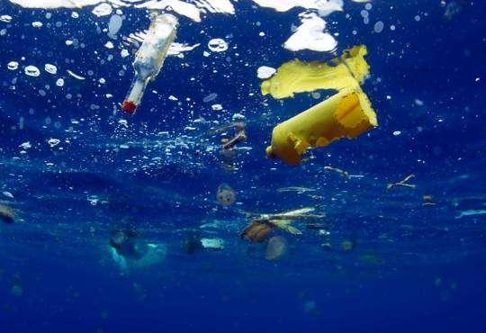 Технології Як океанський пластик вбиває головну бактерію планети екологія мікропластик стаття