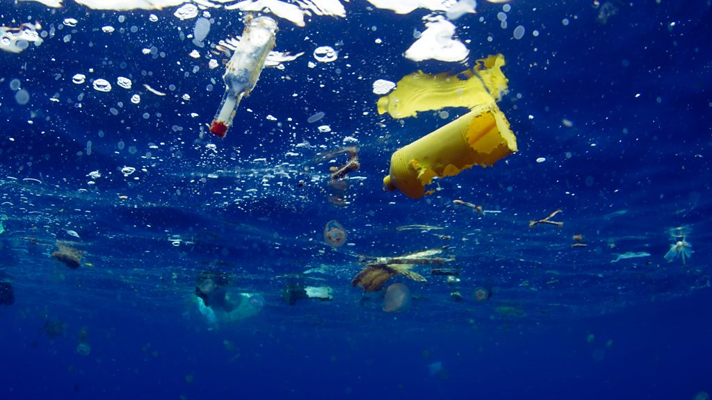 Як океанський пластик вбиває головну бактерію планети