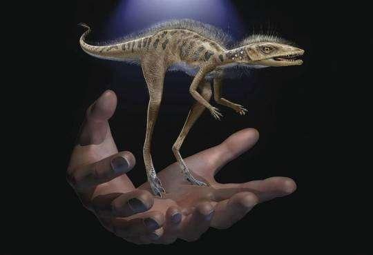 Життя На Мадагаскарі знайшли крихітного предка динозавра динозаври історія новина у світі